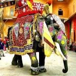 Новый год в Индии: картинки.