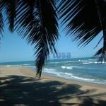 Доминикана: советы туристам.