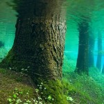 Апрель в Чехословакии Весна в окрестностях Зеленого озера